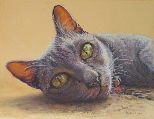 A pastel pet portrait of a cat