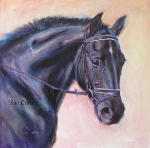 Oil portrait of a black warmblood horse
