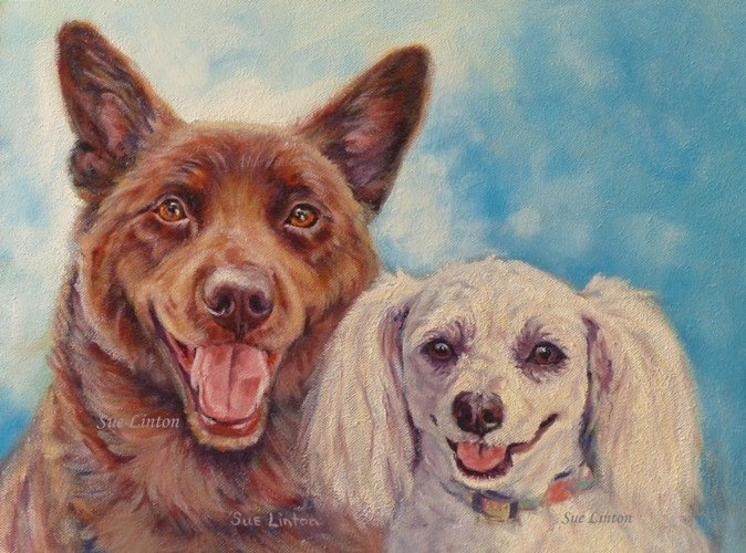 A pet portrait of a red cattledog and a maltese terrier