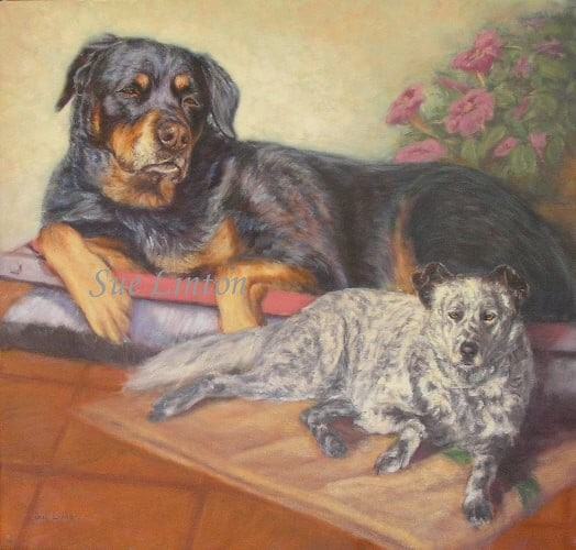 A pet portrait of a Rottweiler and a spotted dog