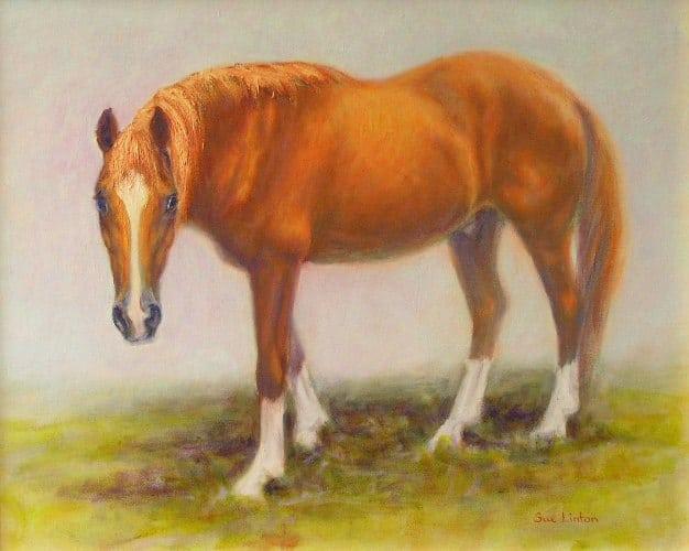 Oil portrait of a horse