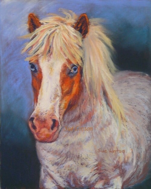 A painting of a shetland with blue eyes.
