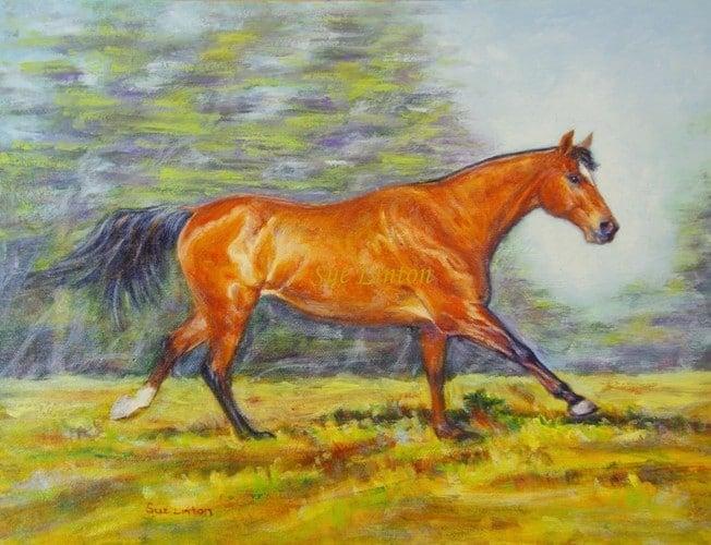 A portrait of a horse running