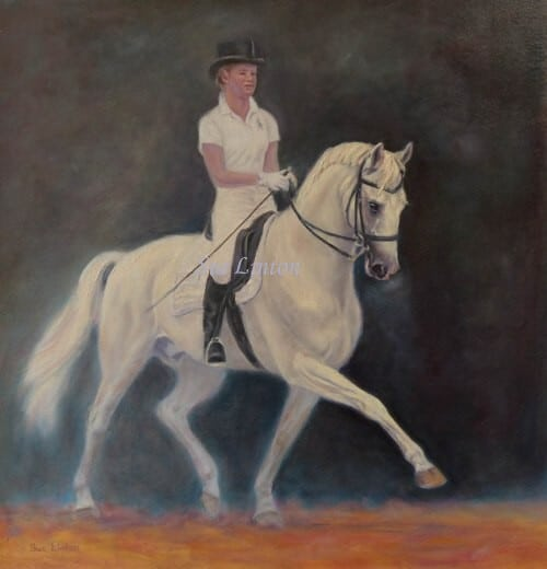 A portrait of a grey dressage horse and rider