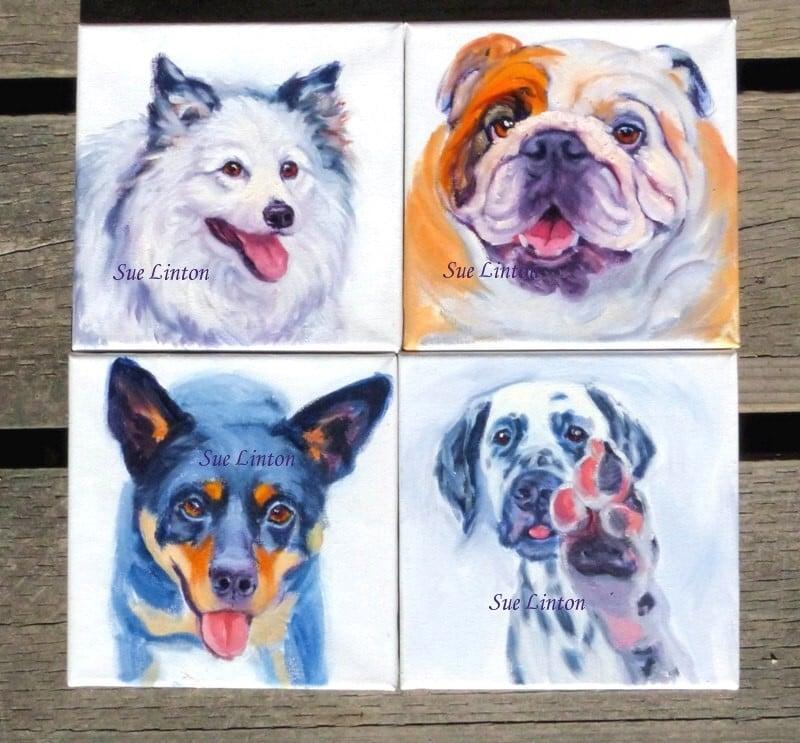 4 small dog portraits