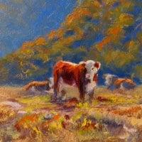 Cows at Brokenback