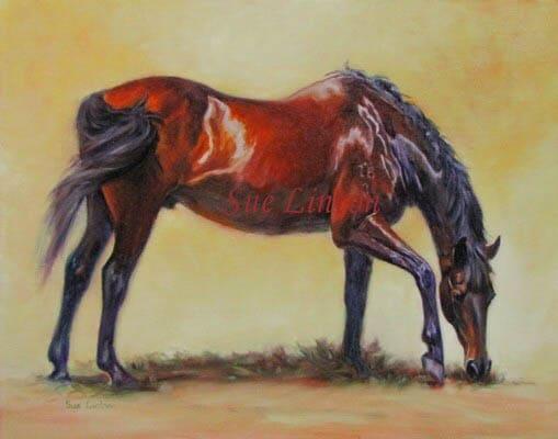 A pet portrait of a horse grazing