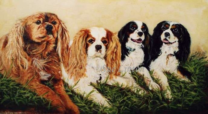 A portrait of 4 Spaniels