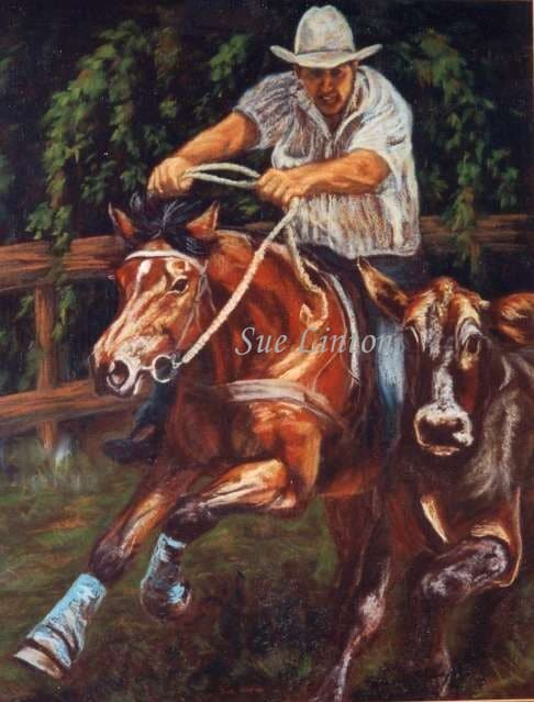 A portrait of a horse and rider campdrafting