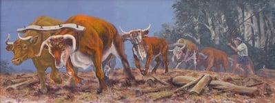 The bullocky mural at Kurri Kurri NSw