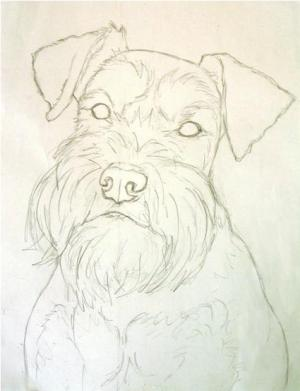 The sketch for emma