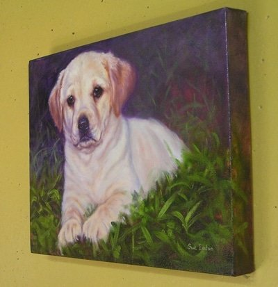 A gallery wrap canvas of a labrador puppy