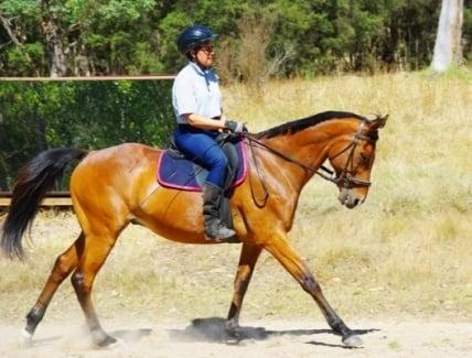Sue riding her horse Zeuss