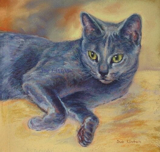Pastel portrait of a cat