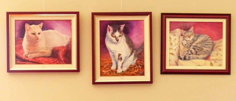 Three cat memorial portraits hung