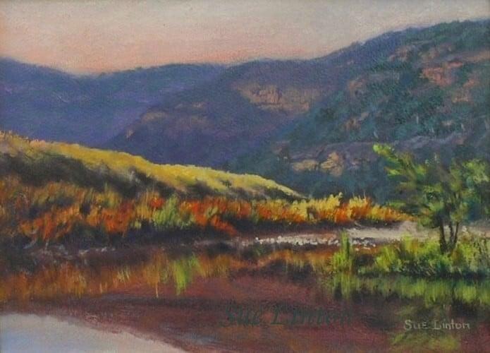 An Australian landscape of a river
