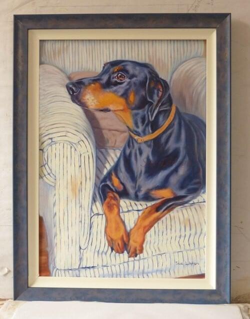 A framed memorial portrait of a Doberman dog