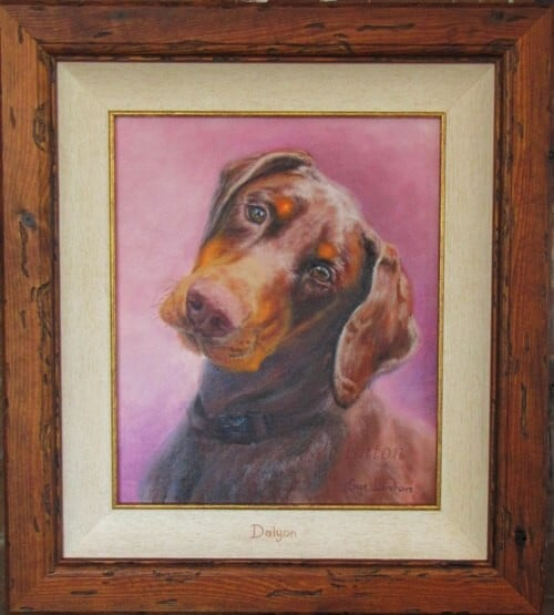 A framed pet portrait of Dalyon the saddleworld Maitland dog