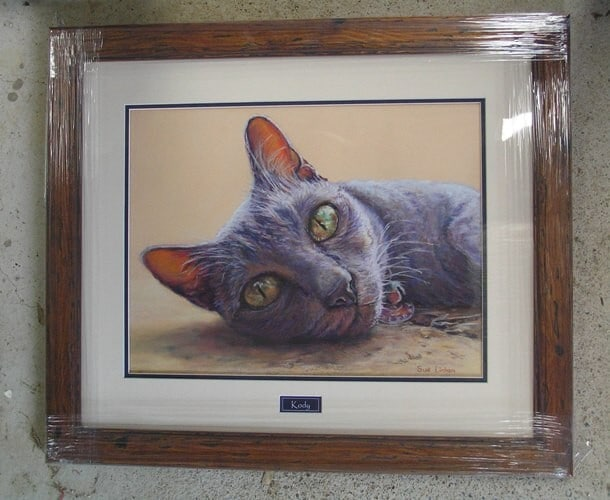 Framed Kody