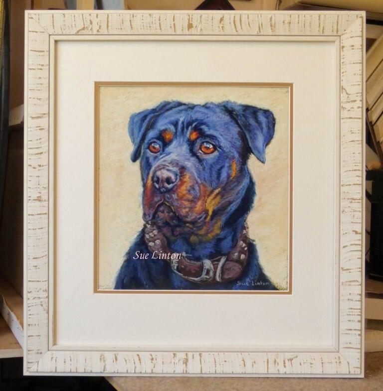 Framed pet portrait of a Rottweiler dog