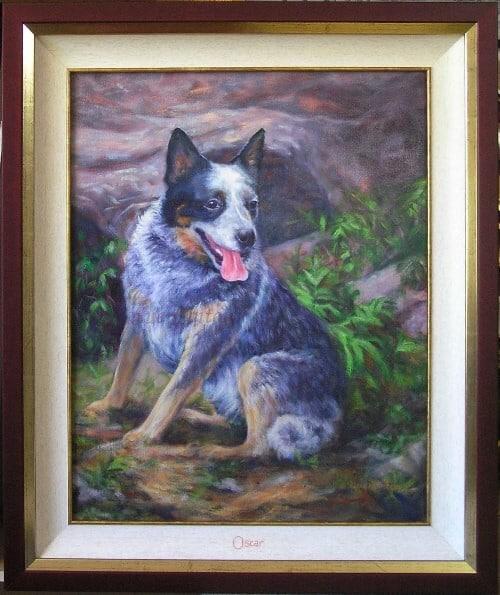 Framed oil pet portrait of a blue cattledog