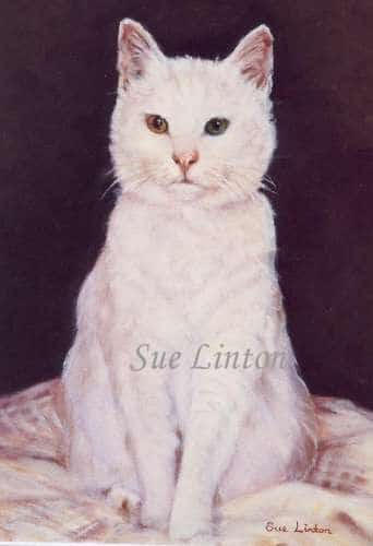 An oil portrait of a cat