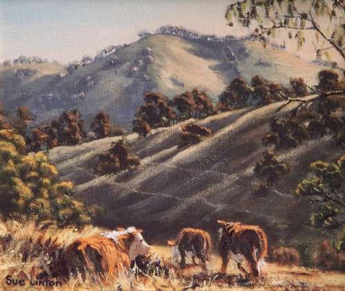 An Australian oil painting of cattle and hills