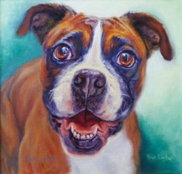 A custom portrait of a dog painted from photos