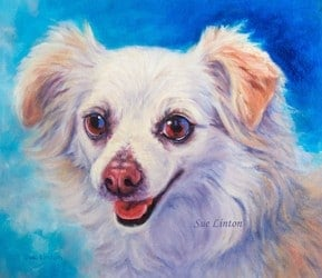 A custom portrait of a dog painted from a photo
