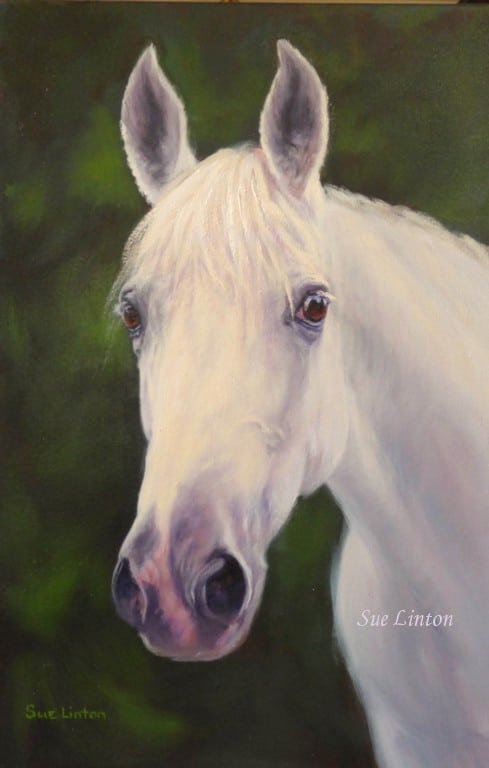 A memorial portrait of a grey horse