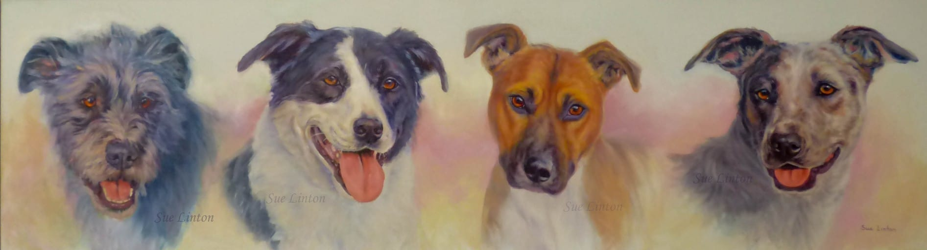 A pet portrait of 4 dogs