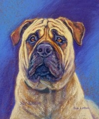 A dog painting of a pet Bull Mastiff dog