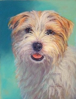 Portrait of a terrier dog