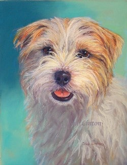 A pet portrait of a dog from photos