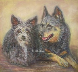 A pet portrait of a cattledog and terrier dog