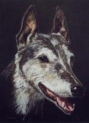 Pastel pencil drawing of a greyhound dog