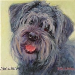 An oil dog portrait of a Schnauzer
