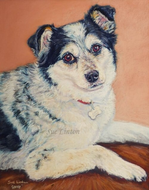 A pastel pet portrait of a cute terrier dog