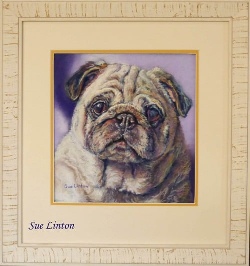 The custom framed pet portriat of the pug