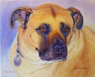 A memorial portrait of a dog