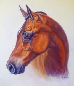 An Oil horse portrait of an arabian horse