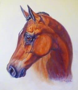 An Oil horse portrait of an arabian horse