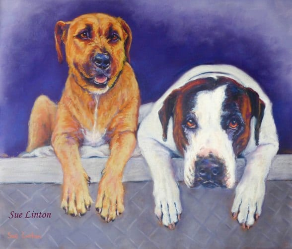 2 huntings dogs on the back of a ute are brought to life in a portrait created from a photo