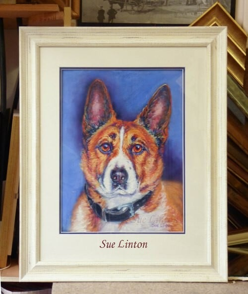 A framed colourful lifelike portrait of a dog painted from a photo