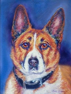 A colourful lifelike portrait of a dog painted from a photo