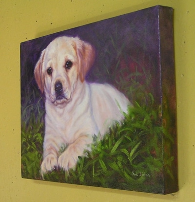 A gallery wrap Oil portrait of a dog