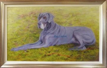 A framed oil portrait of a great dane painted from a photo