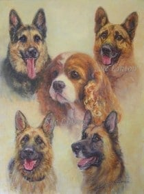 A 5 dog portrait with heads floated on the background