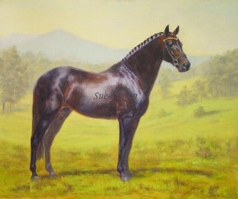 A retired dressage horse is shown in his prime with the property as a backdrop