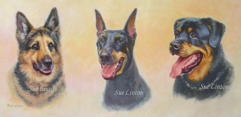 A triple dog portrait with heads floated on the background